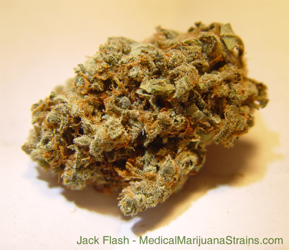 Jack Flash
