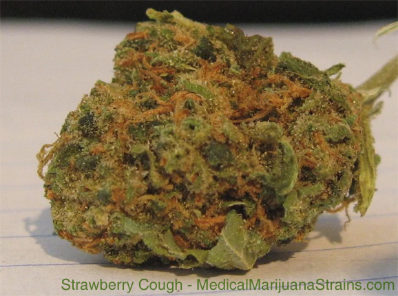 strawberry cough pictures