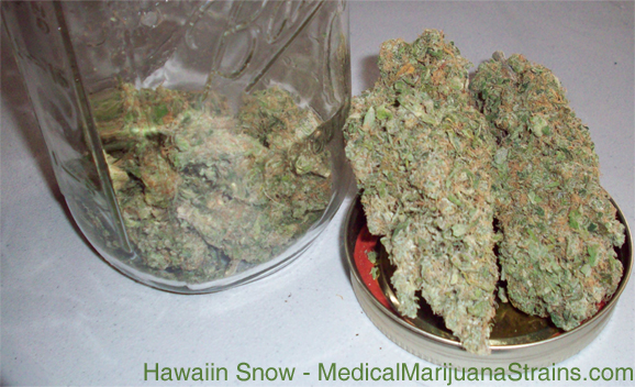hawaiin snow