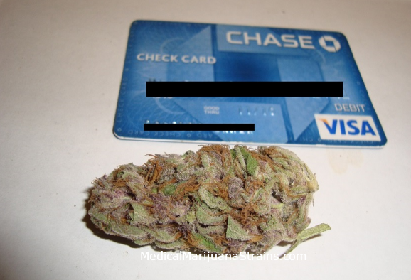Purple Kush Review