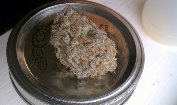 Northernberry Marijuana