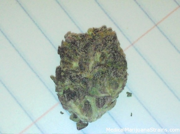 The Purp